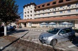 Hotel Romanești, Parc Hotel