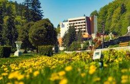 Cazare Domnești-Târg cu wellness, Hotel Perla