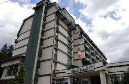 Hotel Piatra Fântânele, Hotel Bradul
