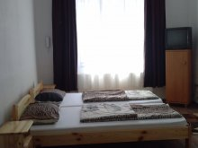 Accommodation Valea Târnei, Daniel Guesthouse