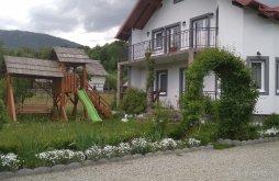 Accommodation Dealu Ștefăniței, Cerbu Guesthouse