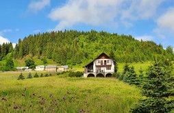 Vilă Șaru Dornei, Villa Serenity