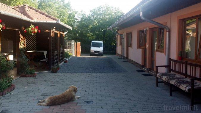 Diófa Guesthouse Corund