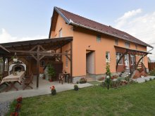 Accommodation Valea Strâmbă, Elekes Guesthouse