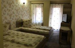 Accommodation Vărzarii de Sus, Mirela B&B