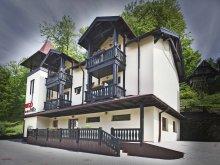 Villa Homoródfürdő (Băile Homorod), Rigó Villa