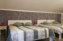 Accommodation Crasna, Carmen Guesthouse
