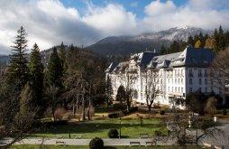 Accommodation Sinaia, Hotel Palace
