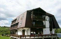 Accommodation Zărnești, Hotel Wolf 3*