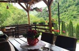 Pensiune Valea de Sus, Pensiunea Anett