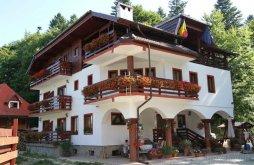 Villa Hidegpatak (Pârâul Rece), Elena Villa