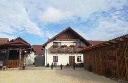 Accommodation Jina, Iancu Guesthouse