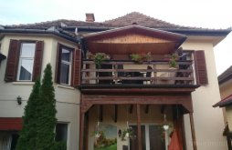 Apartman Nagykapus (Copșa Mare), Liana Panzió