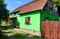 Accommodation Lăzarea, Csergő Ildikó Guesthouse