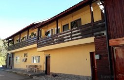 Accommodation Brezoi, Luminița Guesthouse