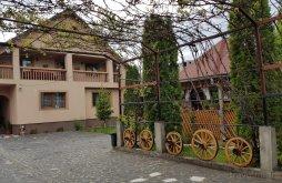Accommodation Bogdan Vodă, Todorica Sergiu Guesthouse