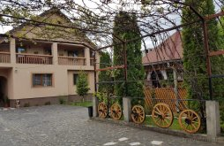 Accommodation Dragomirești, Todorica Sergiu Guesthouse