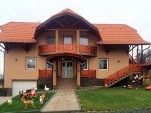 Cazare Transilvania, Casa Borvíz