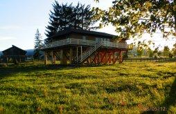 Accommodation Șaru Dornei, Căsuța din Copac - Cocoșul de Munte Guesthouse