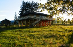 Vacation home Șaru Dornei, Căsuța din Copac - Cocoșul de Munte Guesthouse