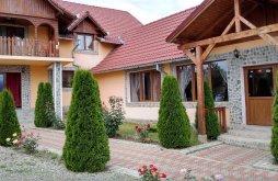 Cazare Cârțișoara, Pensiunea Casa Nina
