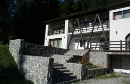 Panzió Felsőtömös (Timișu de Sus), Casa Timiș-Valley Panzió