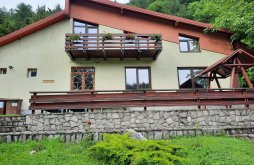 Nyaraló Izvorul Tămăduirii kolostor közelében, Teodora Nyaraló
