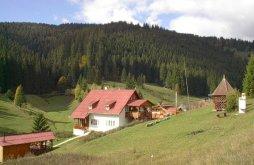 Hostel Ilva Mică, Hostel Fitness