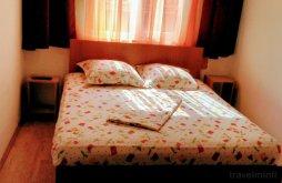 Vacation home Constanța county, Constantin Guesthouse