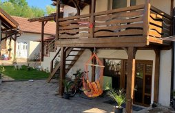 Accommodation Totești, Țara Hategului Vacation home