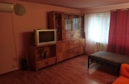 Vilă Apatiu, Apartament S&F