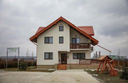 Accommodation Zece Prăjini, Lucian Guesthouse