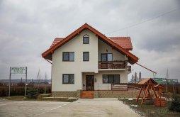 Panzió Satu Nou (Belcești), Lucian Panzió