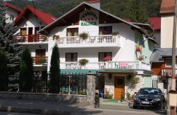 Accommodation Sinaia, Raluca Guesthouse