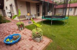 Guesthouse near Aquapark Nymphaea Oradea, Casa Horea Villa