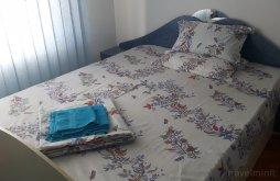 Apartman Seaca (Sălătrucel), Ianis Apartman