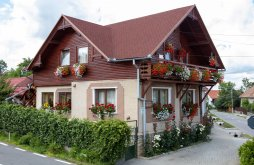 Accommodation Băbiu, Saroklak Guesthouse