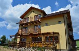 Accommodation Măguri-Răcătău, Popasul Iancului Guesthouse