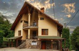 Villa Harghita county, Deság-Villa Guesthouse