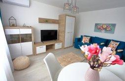 Accommodation Bumbești-Jiu, Delora View Apartment