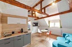 Accommodation Noul Săsesc, T House Guesthouse