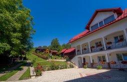 Bed & breakfast near Voroneț Monastery, Boculeț Guesthouse