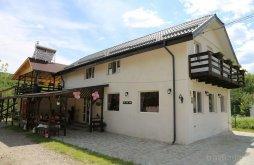 Vendégház Sărata-Monteoru, Casa Ghica Panzió