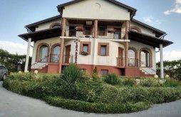 Vendégház Szászcsór (Săsciori), Casa Borza Vendégház