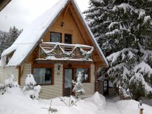 Villa Gelence (Ghelința), Traveland Villa