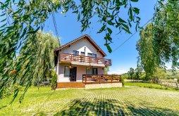 Villa Gelence (Ghelința), Nițu Panzió