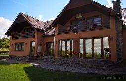 Villa Szászapá Apátfalva (Apoș), Veve Villa