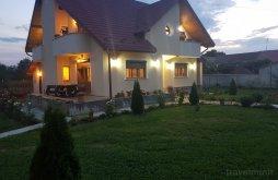 Villa Gerdály (Gherdeal), Grecu Villa