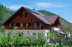Panzió Szeben (Sibiu) megye, Livada Amely Panzió