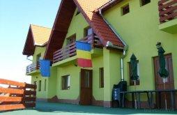 Accommodation Alțâna, Any Guesthouse